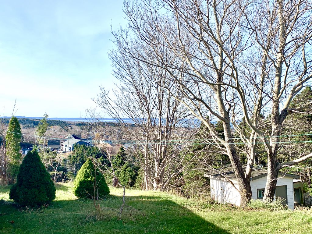 20b Stafford's Road, Conception Bay South
